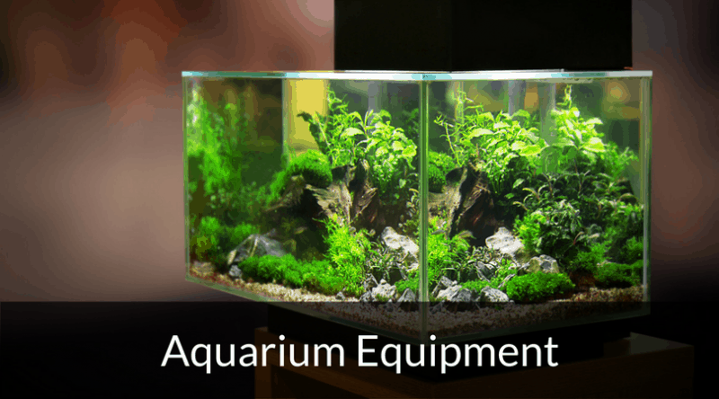 equipment fish tank world