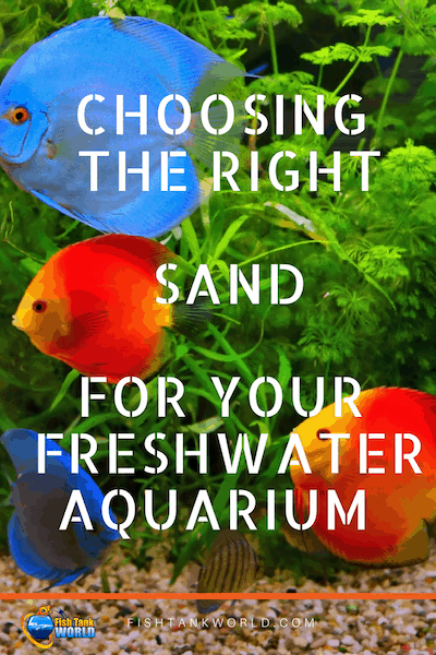 Choosing The Best Sand For Your Freshwater Aquarium | Fish Tank World