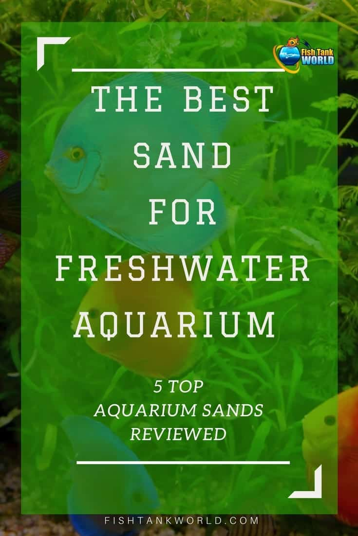 The best sand to use in your freshwater aquarium