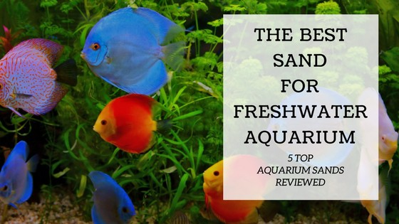 Choosing the right sand for your freshwater aquarium