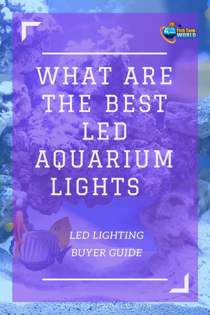Aquarium Led Light. How to choose LED lights for your Aquarium, what are the benefits and what to watch out for. An in-depth guide.