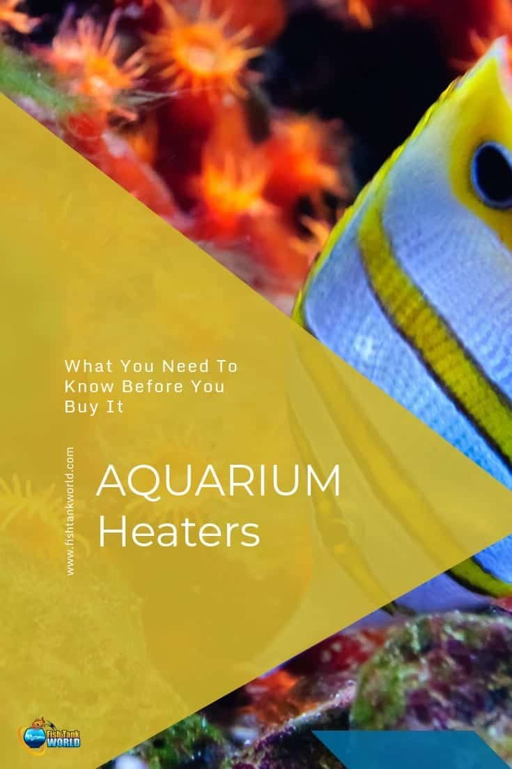 Aquarium heaters are a fundamental piece of equipment particularly if you have tropical livestock. Aquarium heaters not only create the right water temperature for your fish, but they plays a critical role in keeping that water temperature stable. Learn more on different types of aquarium heaters, different sizes and what to consider before buying an aquarium heater.