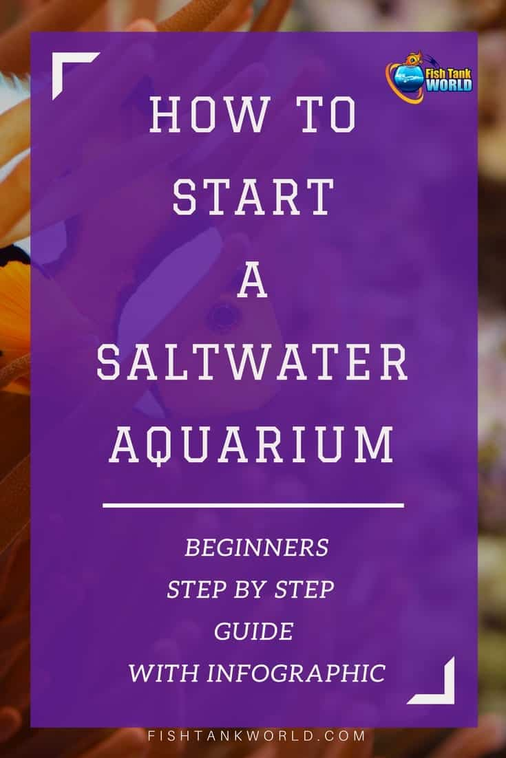 How to start a saltwater aquarium. A comprehensive guide with tips to start a saltwater aquarium that covers all you need to know to start the very first saltwater fish tank and clear common misconceptions between saltwater and freshwater aquarium.