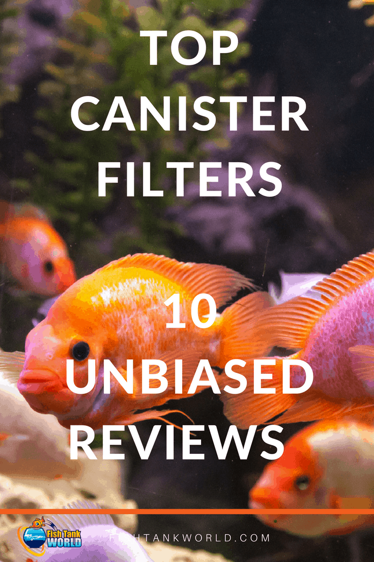 Canister filters for home aquarium to keep the water clean.