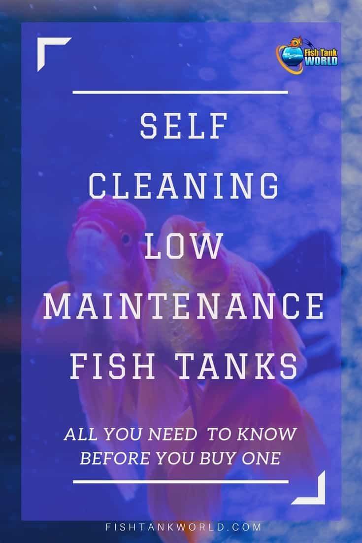 Self Cleaning Fish Tanks are Aquarium that cleans themselves. Self cleaning and low maintenance aquarium are the dream of most aquarists.