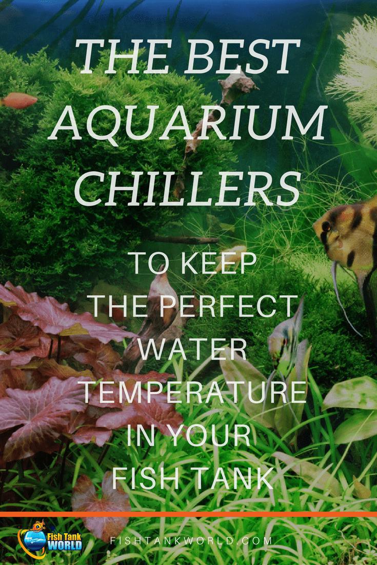 Aquarium Chillers. How to control the water temperature of your Aquarium with the best aquarium chillers for fish tank