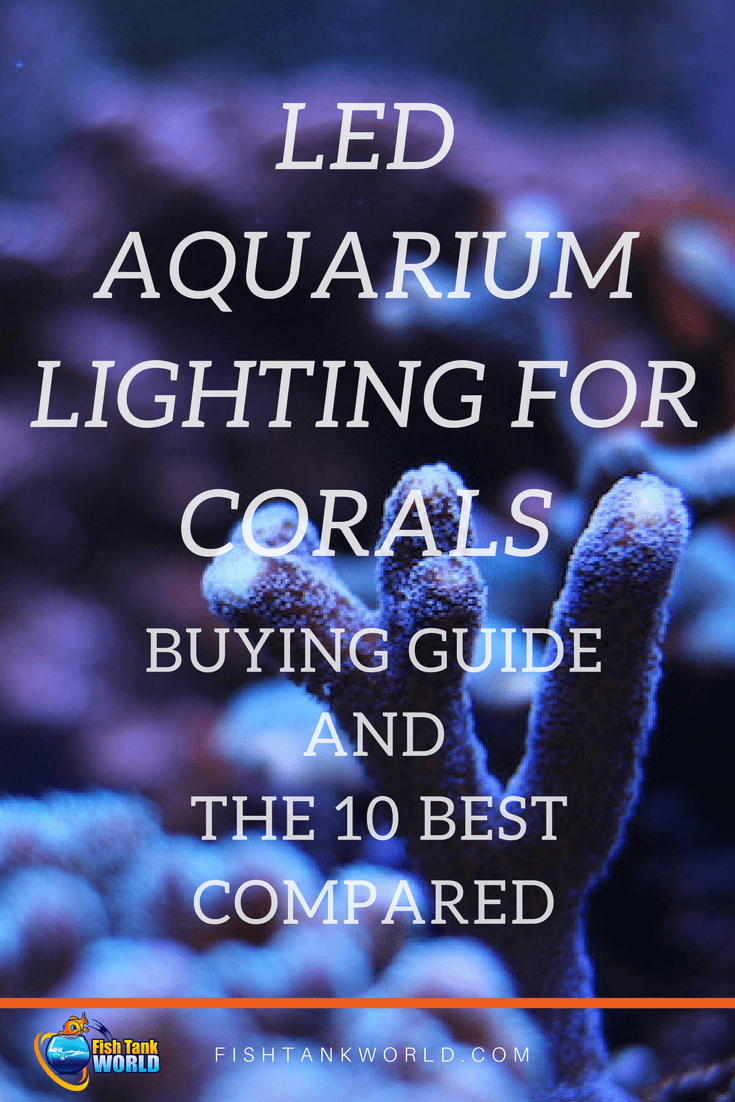 Best LED Aquarium Lighting for Corals. A buying guide and the LED Best lighting to grow Corals in your Aquarium compared.