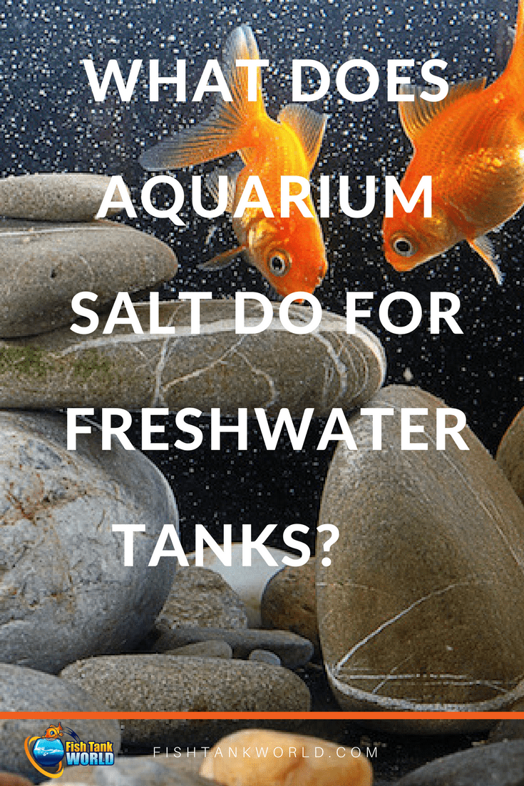 If there's one topic guaranteed to stir up controversy in the world of the hobby aquarist, it's this: what does aquarium salt do for freshwater tanks? It's polarising: some aquarist say YES, salt is ESSENTIAL for freshwater tanks, and will list all the reasons. Some others say NO, salt ISN'T necessary for freshwater aquariums, with just as many reasons.