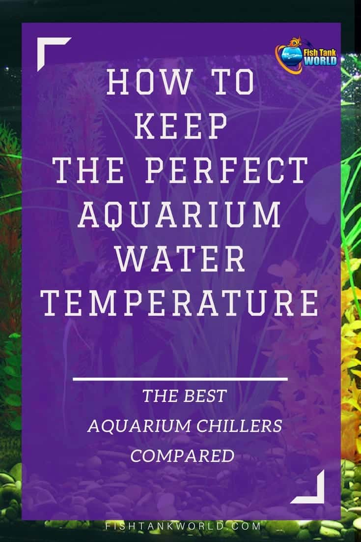 Aquarium Chillers. How to control the water temperature of your Aquarium with the best aquarium chillers for fish tank