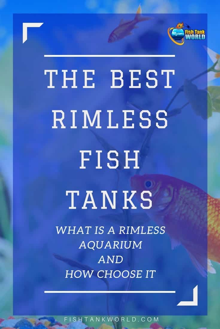 Rimless Fish Tanks. Every aquarist wants the best looking aquarium that they can have, and in this quest a rimless aquarium is very often the answer. Here is a guide on what is a rimless aquarium and how choose the best one.
