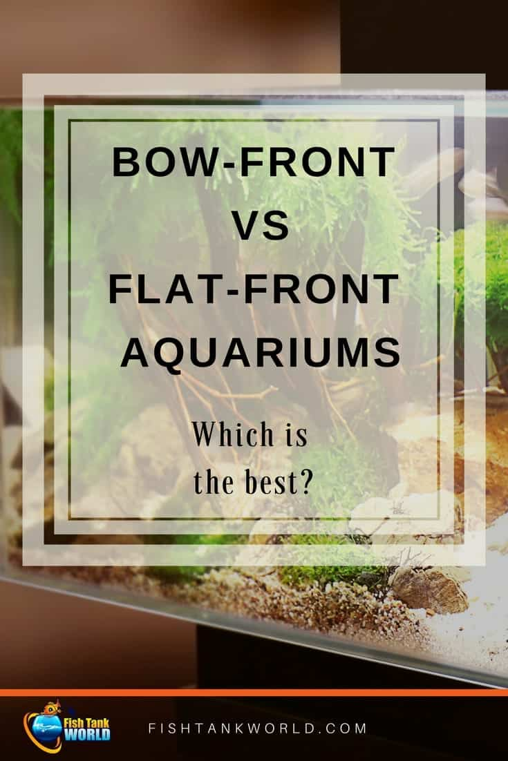 Bow-Front vs Flat-Front Aquariums: Which one is the best fish tank for you? The bow and flat from Aquarium checked in the details to provide the best information for picking your Aquarium.