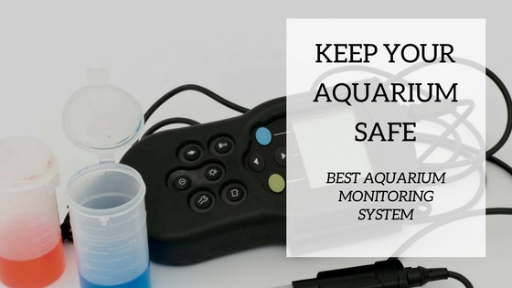 Best Aquarium Monitoring System