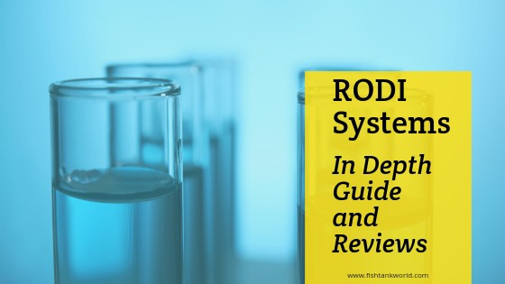 Best RODI System