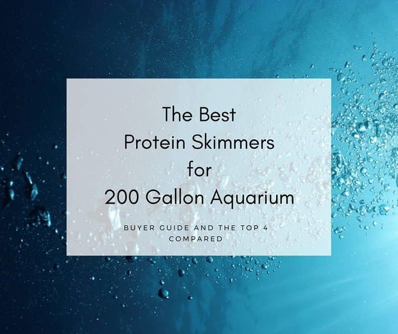 Best Protein Skimmer For 200 Gallon Tank