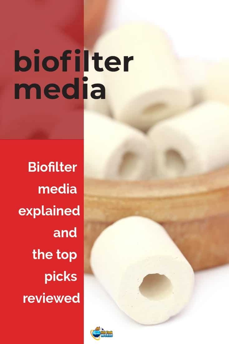 Aquarium bio filter media. Guide to filter media and the different types to choose from. One of the key success components that makes biological filtration so effective in breaking the toxins in a tank (such as ammonia, nitrite, dissolved organic solids, and nitrate), is the biofilter media used in the filter.
