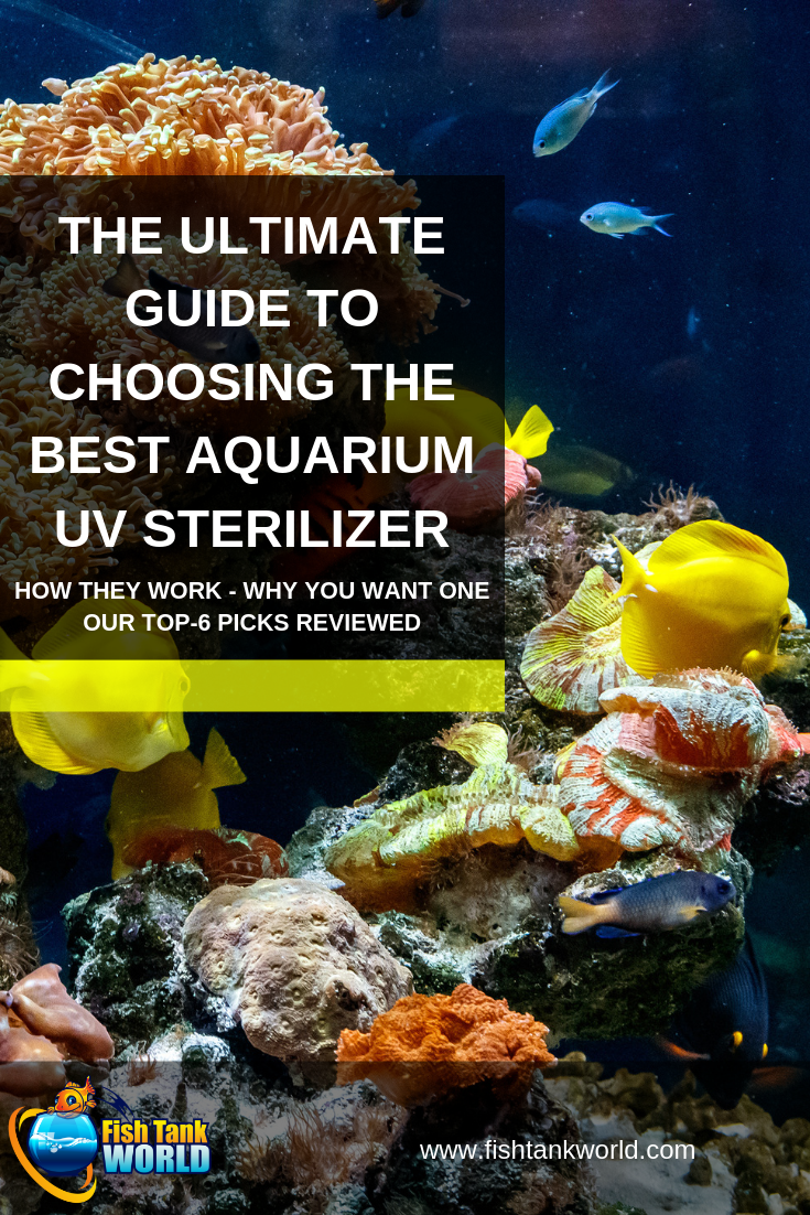 UV sterilizers keep your fish tank\'s water clean and healthy by killing free floating algae, parasites, and bacteria. Learn how they work, their benefits, and our top-6 picks for the best aquarium UV sterilizers of 2019 reviewed.