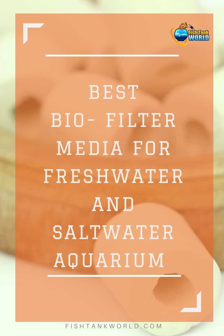 Aquarium bio filter media. Guide to filter media and the different types to choose from.