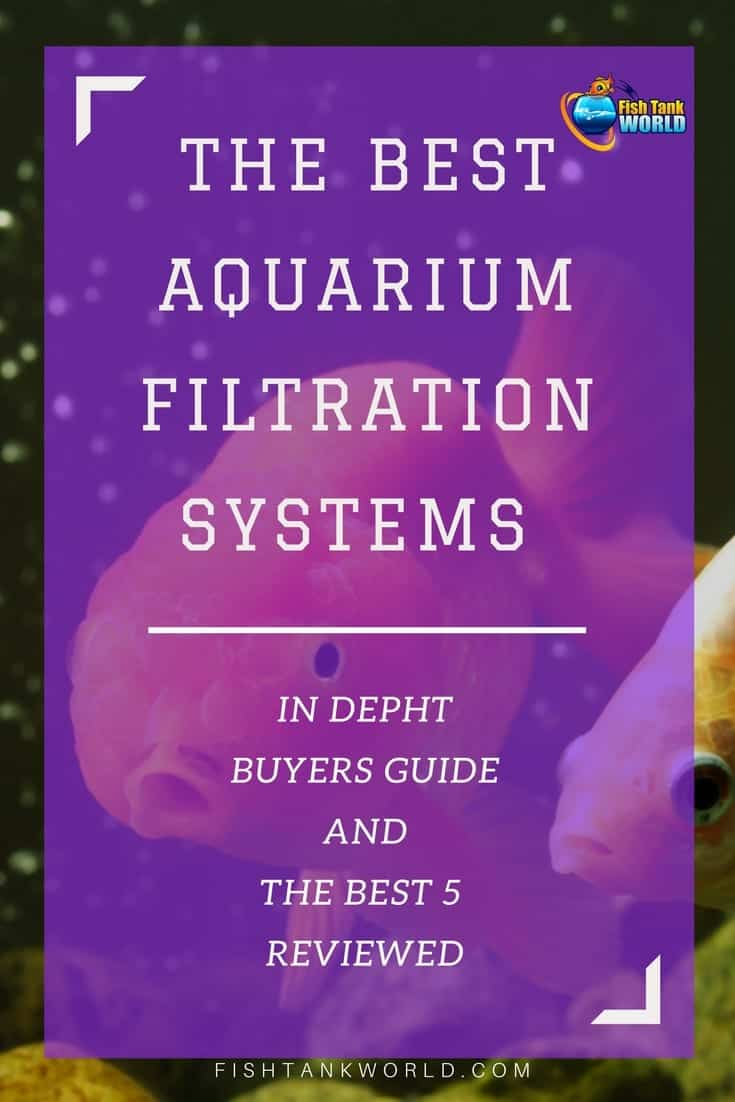 If you are looking for the best aquarium filter for your tank, this guide is for you. All the most common types of aquarium filters explained: canister filters, undergravel filters, power filters, wet / dry filters and filters for high capacity operations.