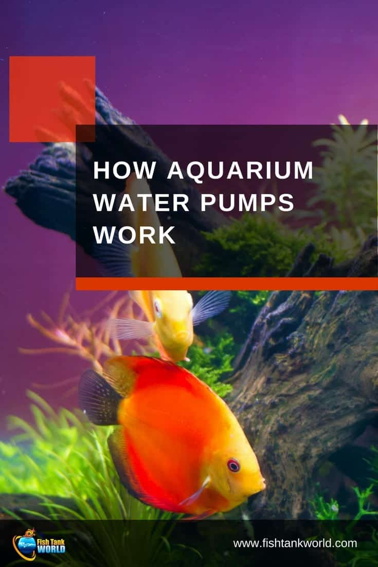 how aquarium water pumps work fish tank world