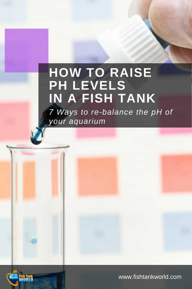 Learn how to adjust the pH levels in a fish tank and find out more about why this is important to maintain the health of fish. Failure to follow basic tank maintenance rules could result in dire consequences for your fish.