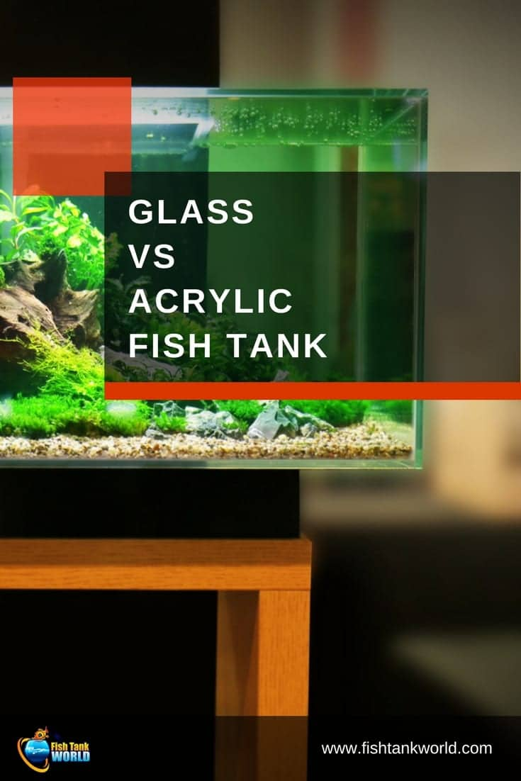 The debate about glass fish tanks vs acrylic aquariums has been on for some time among aquarist. What are the pros and cons of glass and acrylic fish tanks and what is the state of the art.