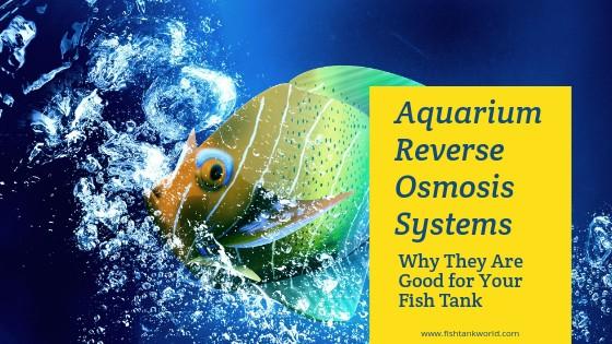 Aquarium RO Systems