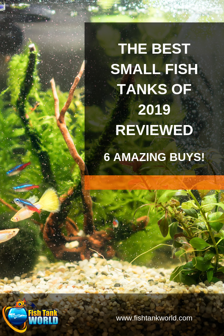 Everyone loves looking at an aquarium but not everyone has room for a large fish tank. We\'ve found and reviewed the 6 best small fish tanks of 2019. Each of these aquariums would make a great addition to any home, office, or desktop! These nano aquarium kits are beautifully designed and most of them come complete with everything you need to get started with your new aquarium hobby.
