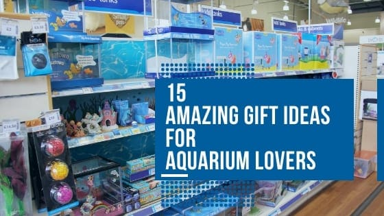 gift ideas aquarium lovers