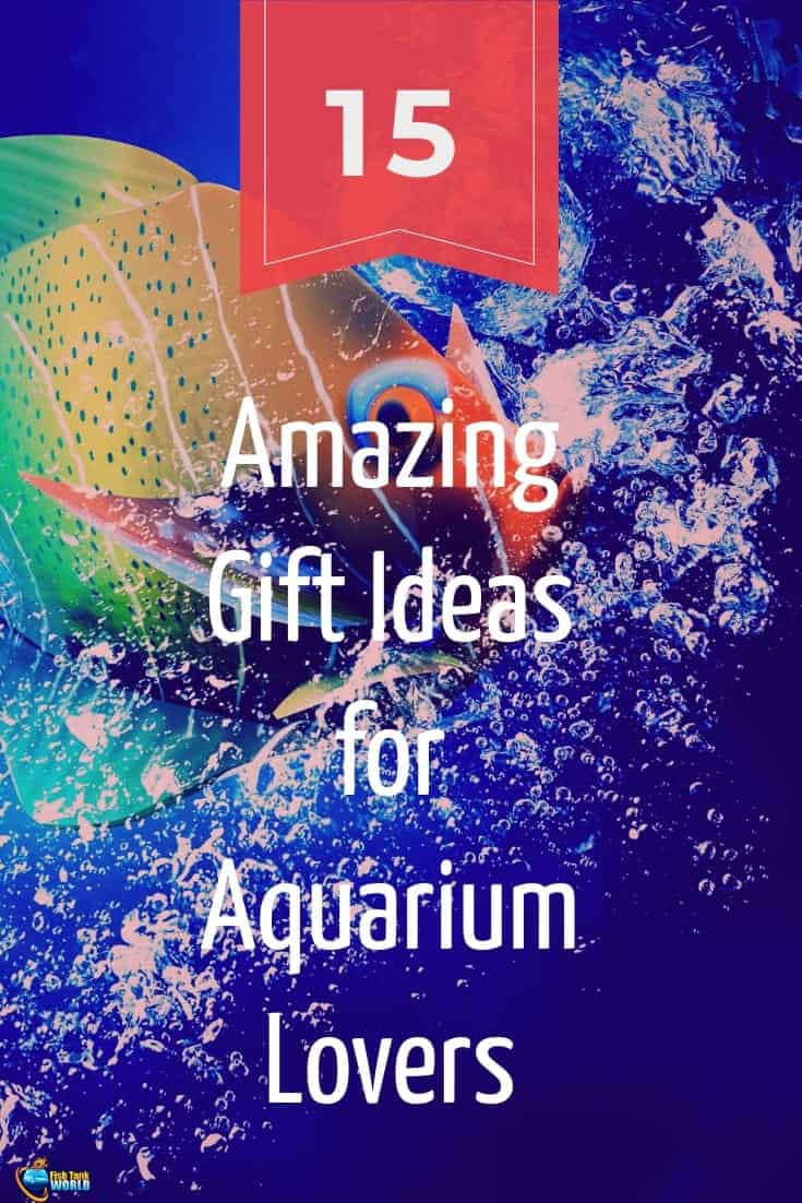 Ever tried choosing a gift for an Aquarium Lover? Feeling frustrated with the same advices over and over, or maybe your beloved aquarist is an expert and has everything? Here is where we come in. Here are 15 great gifts you can choose from to make even the most demanding fish keeper happy!