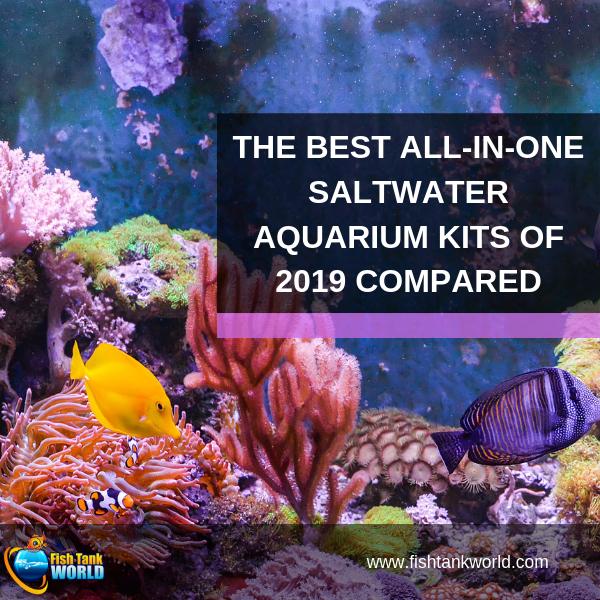 best all in one saltwater aquarium kit
